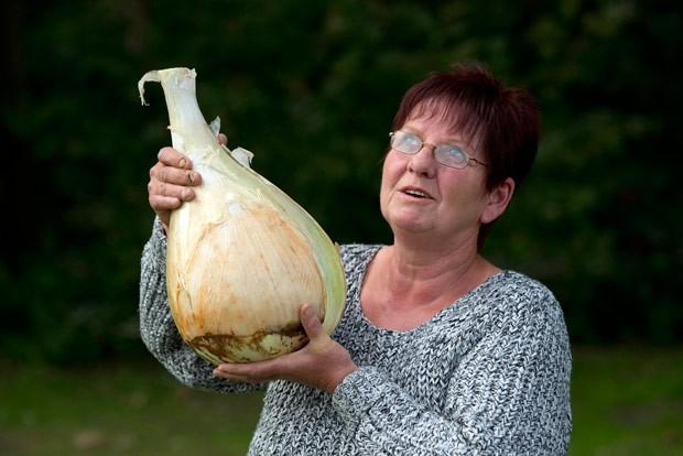 Com cebola de 6 kg, britânica leva título em disputa de vegetais gigantes