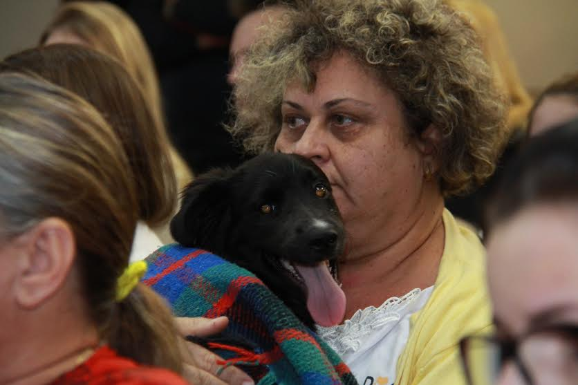 Comissão Provisória para discutir situação de animais abandonados é acordada em audiência
