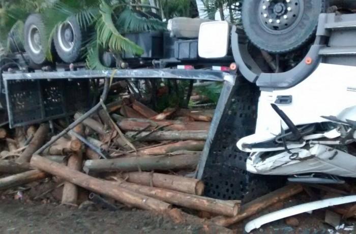Caminhão carregado de toras tomba em Guaramirim
