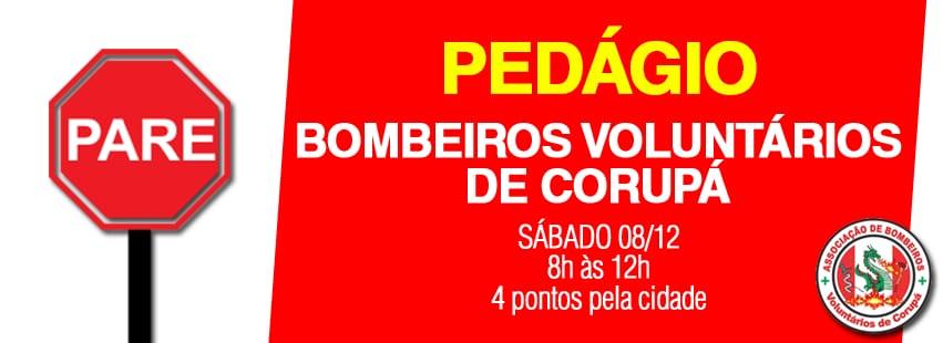 Imagem: Bombeiros de Corupá