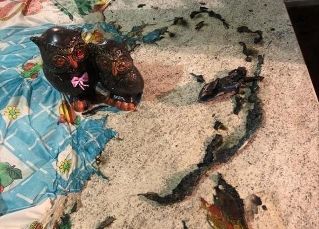 Itens que estavam na mesa foram parcialmente queimados por idoso em Chapecó; mulher pediu que ele lavasse as mãos — Foto: PM/Divulgação