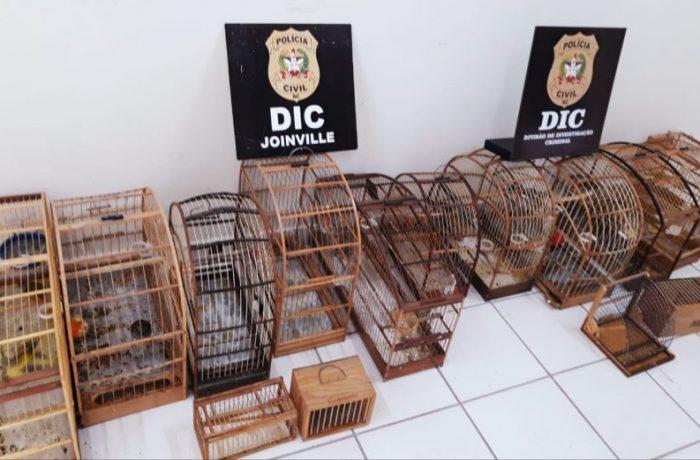Foto Divulgação/Polícia Civil