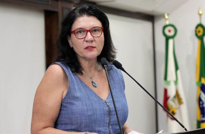 Vereadores do Novo votam contra cobrança de taxa em obras de pavimentação asfáltica em Jaraguá do Sul