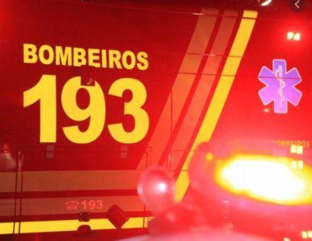 Ataque de Pitbull na Corticeira: Menina de 10 anos ficou ferida nos braços e pernas