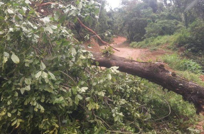 Defesa civil de Jaraguá do Sul segue em estado de atenção por causa da chuva